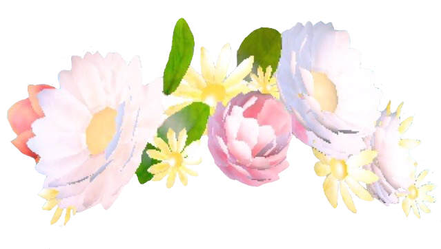 Flower crowns png. Snapchat crown like or