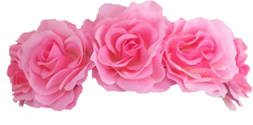 Flower crown transparent png. Wow references image