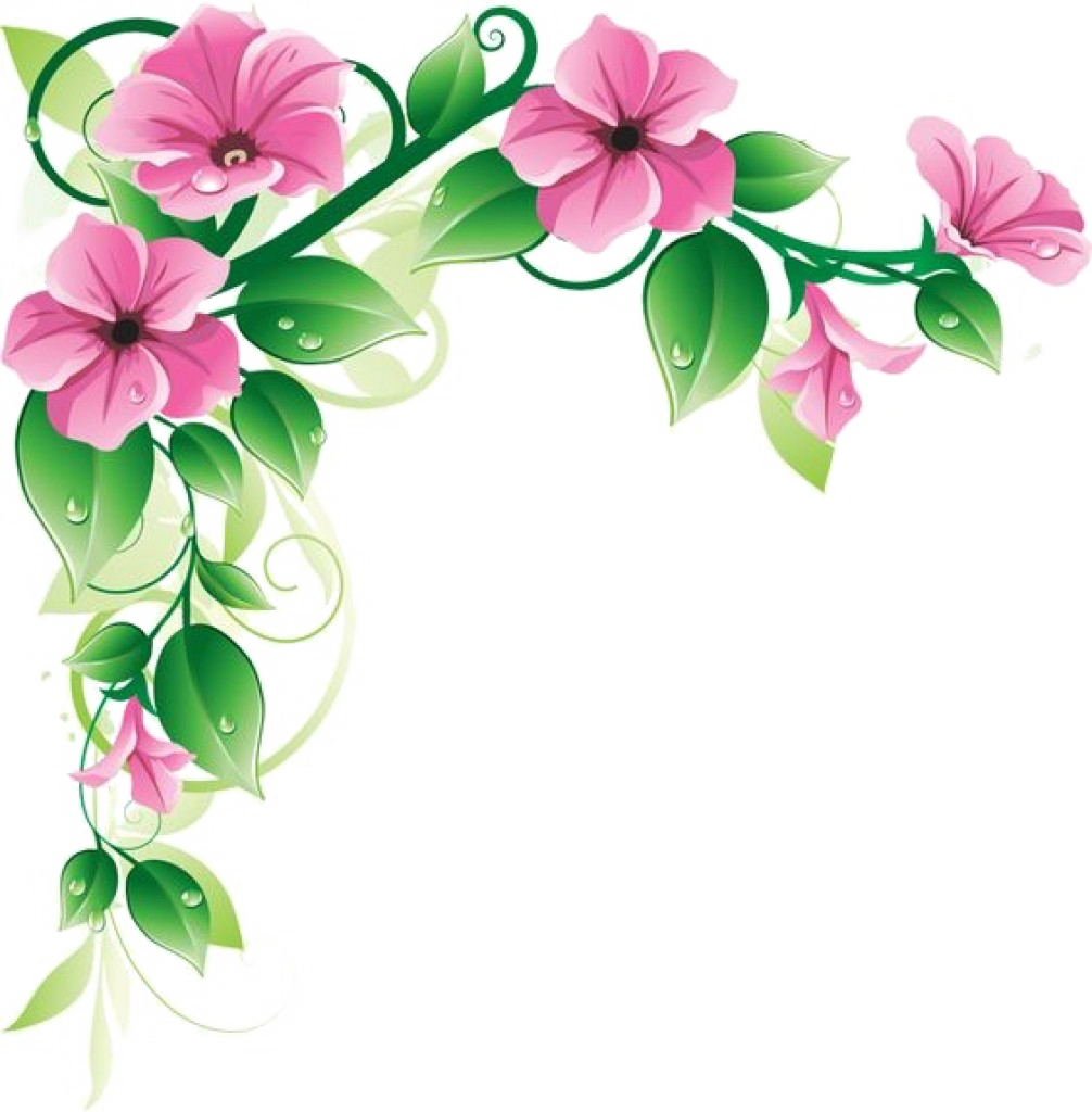 Flower frame png. Pic vector clipart psd