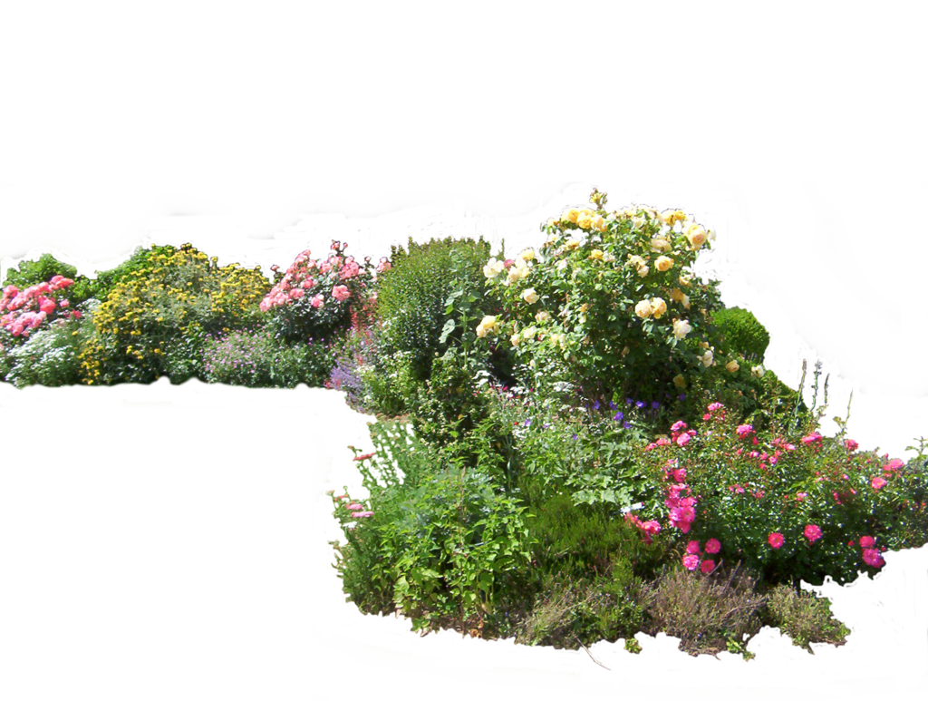 Flower garden png. Flowered by montvalentstock on