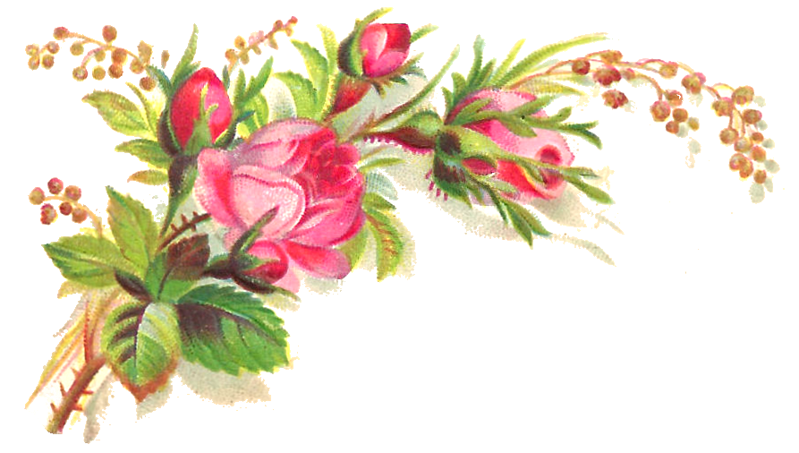 Flower graphic png. Antique images free clip