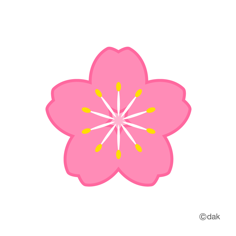 Flower graphic png. Symbol of the cherry