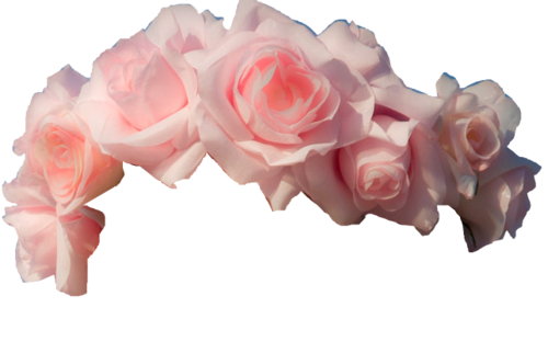 Flower headband png. Image about cute in