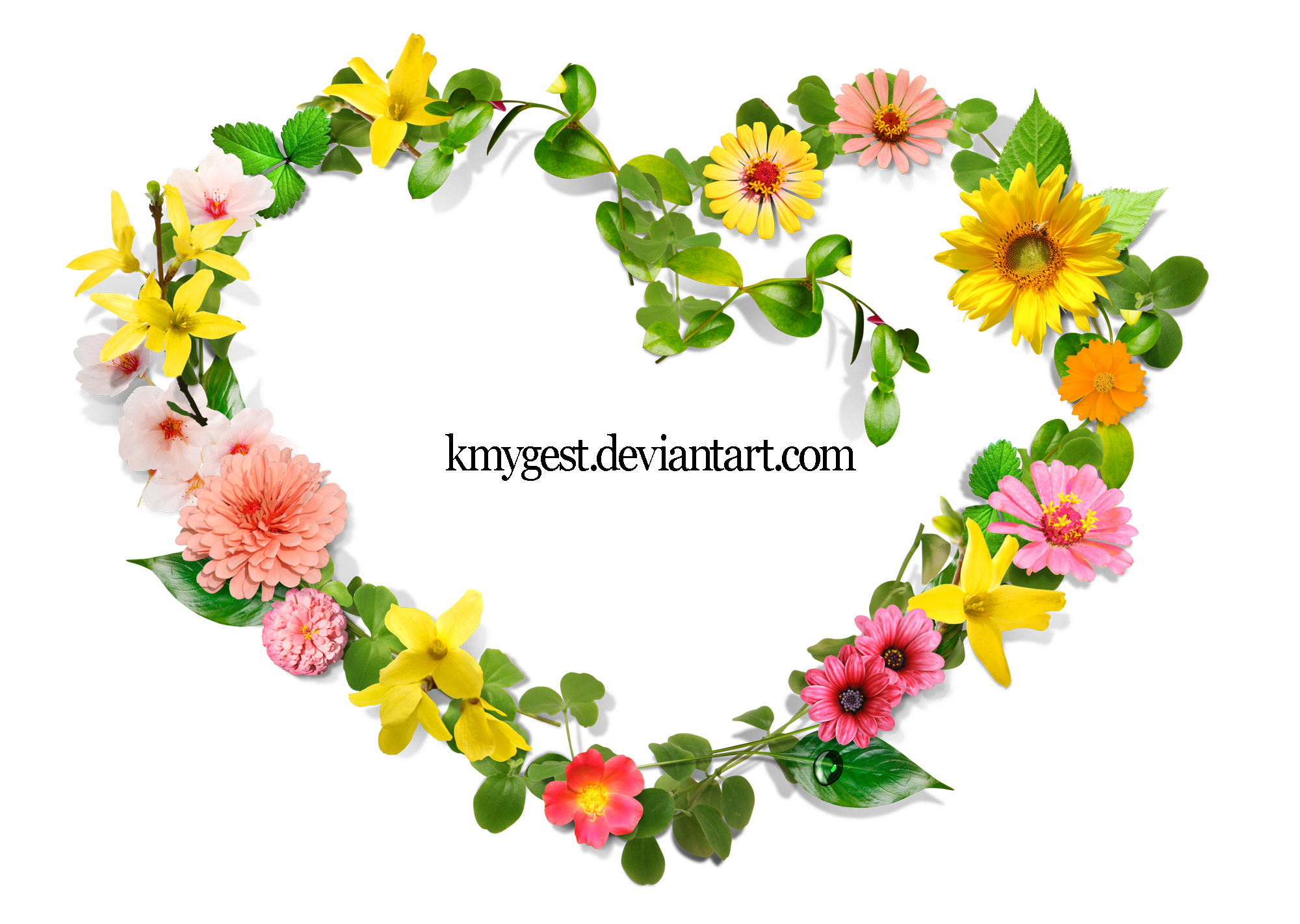 Flower heart png. Flowers by kmygraphic on