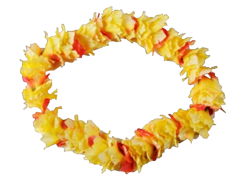 hawaiian necklace png