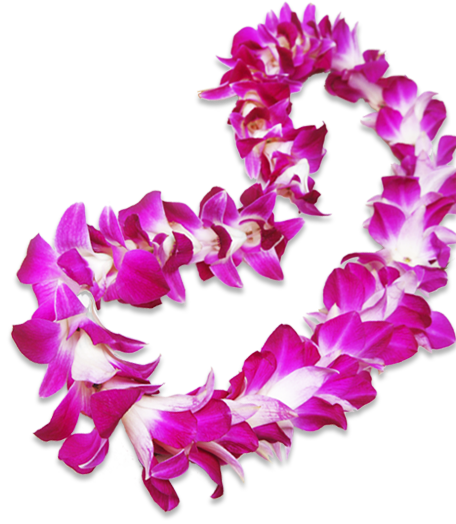 Flower lei png. Hyatt contact pualeilani shops
