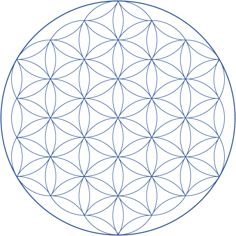 Flower of life png. Hexnet