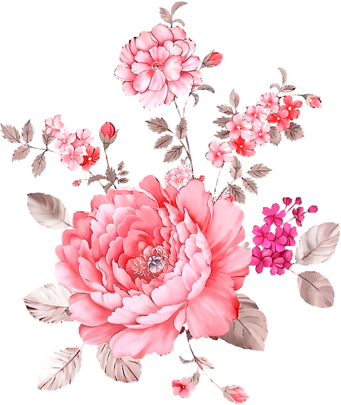 Pink flowers transparency overlay. Flower overlays png jpg transparent stock