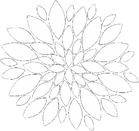 Flower overlays png. White mandala complexediting edits