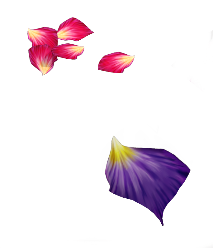 Flower pedals png. Rose petals by r