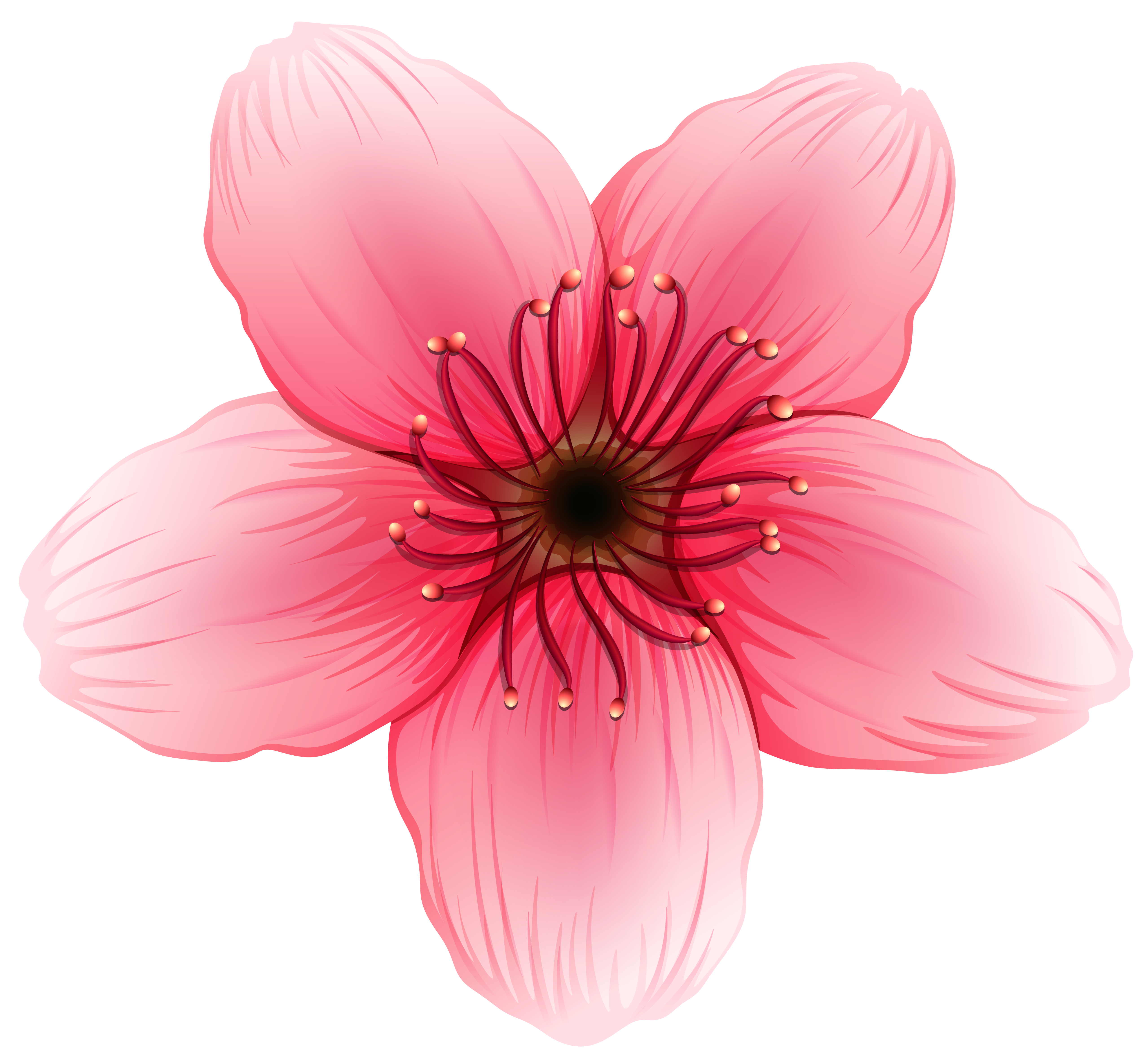 Flower png. Clipart image gallery yopriceville