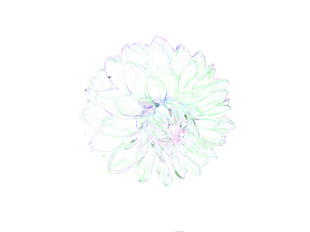 Flower png deviantart. Fract black by ultimalitho