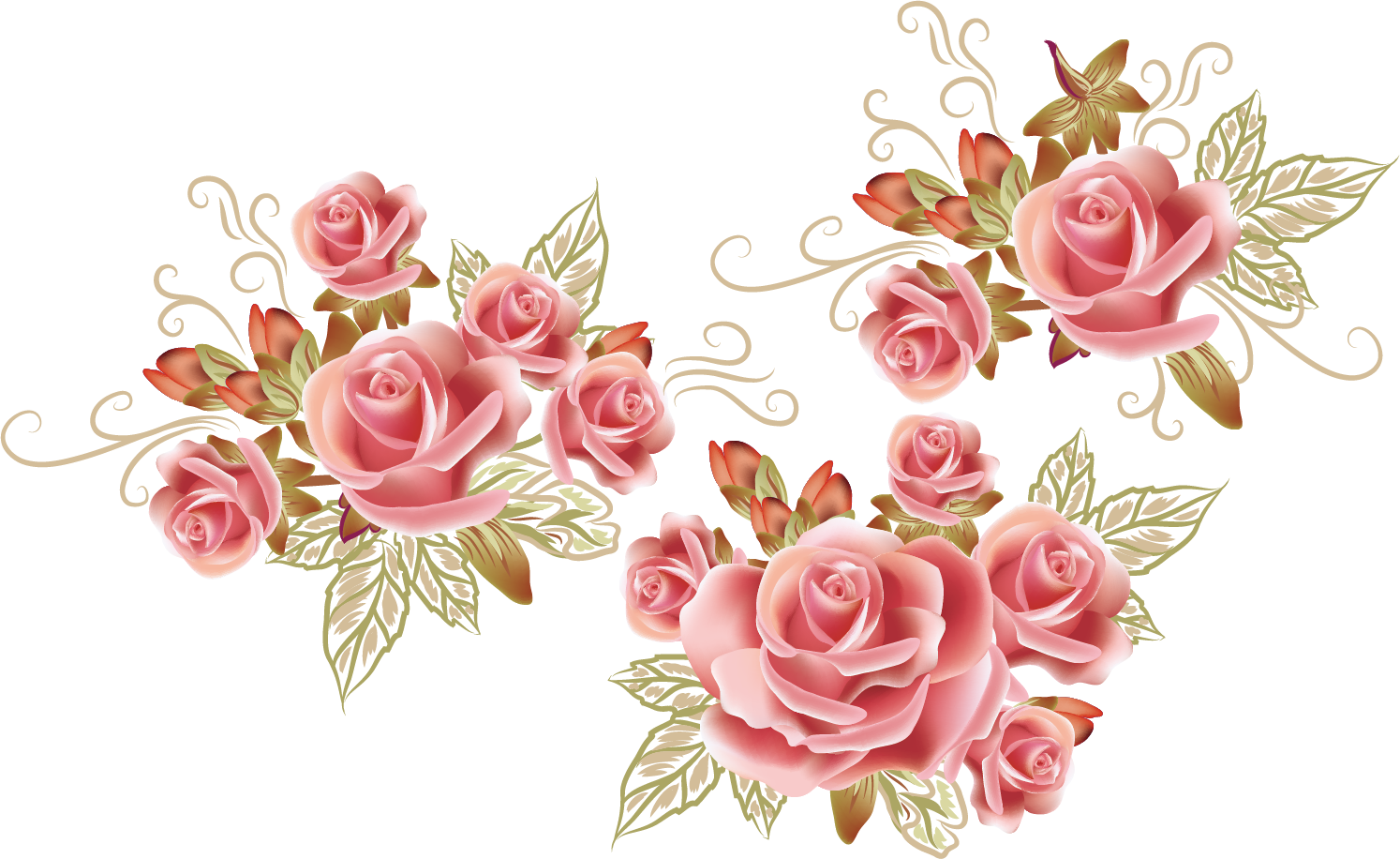 Flower png drawing. Rose pattern creative transprent
