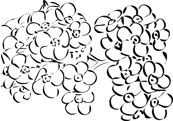 Flower png outline. Flowers clip art at