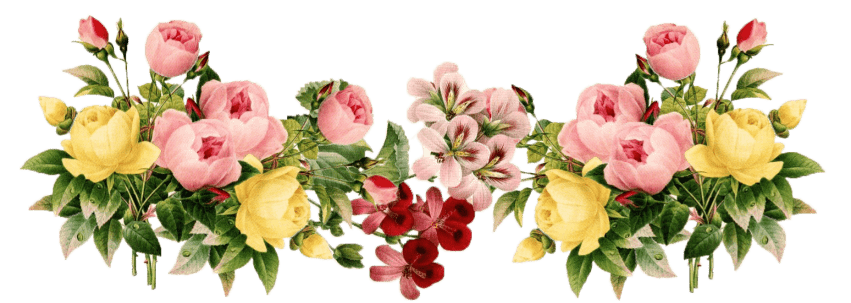 Free images toppng transparent. Flowers png picture