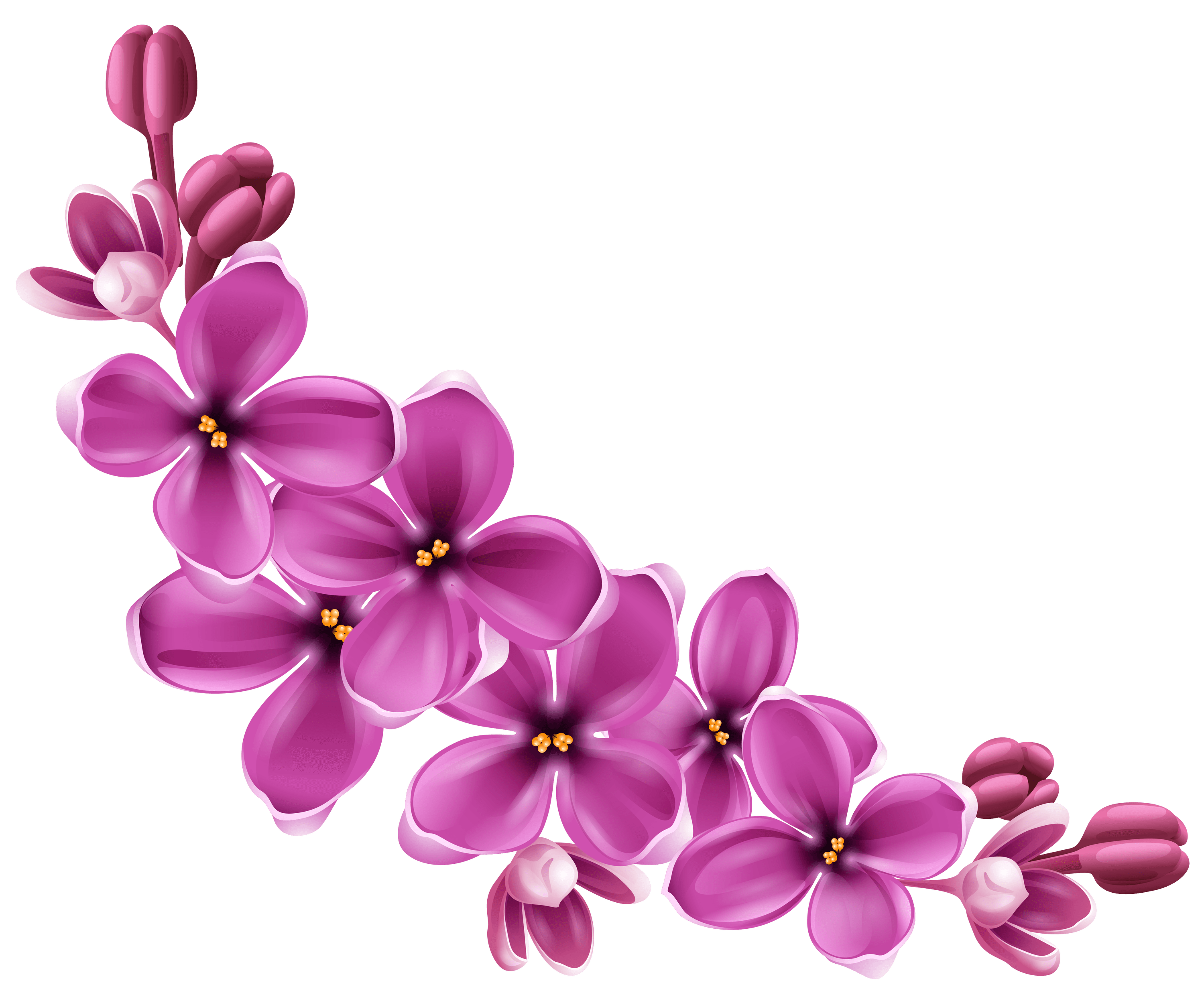 Purple curve stickpng. Flowers transparent png png download