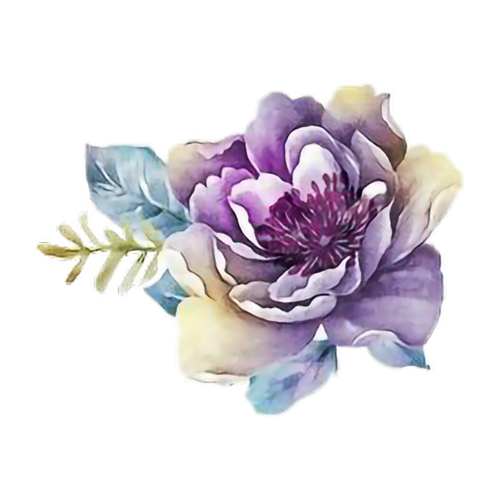 Ftestickers art rose purple. Flower png watercolor image library library