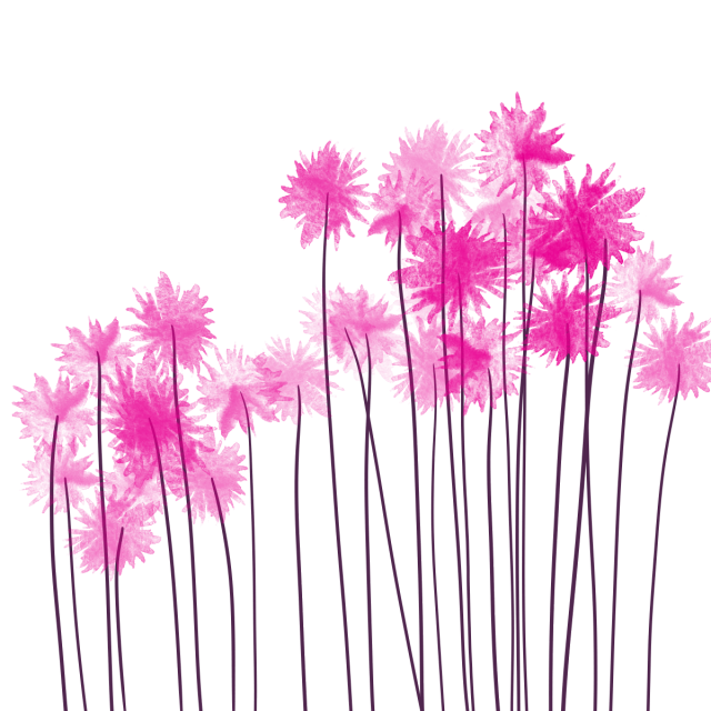 Pink and psd file. Flower png watercolor vector library library