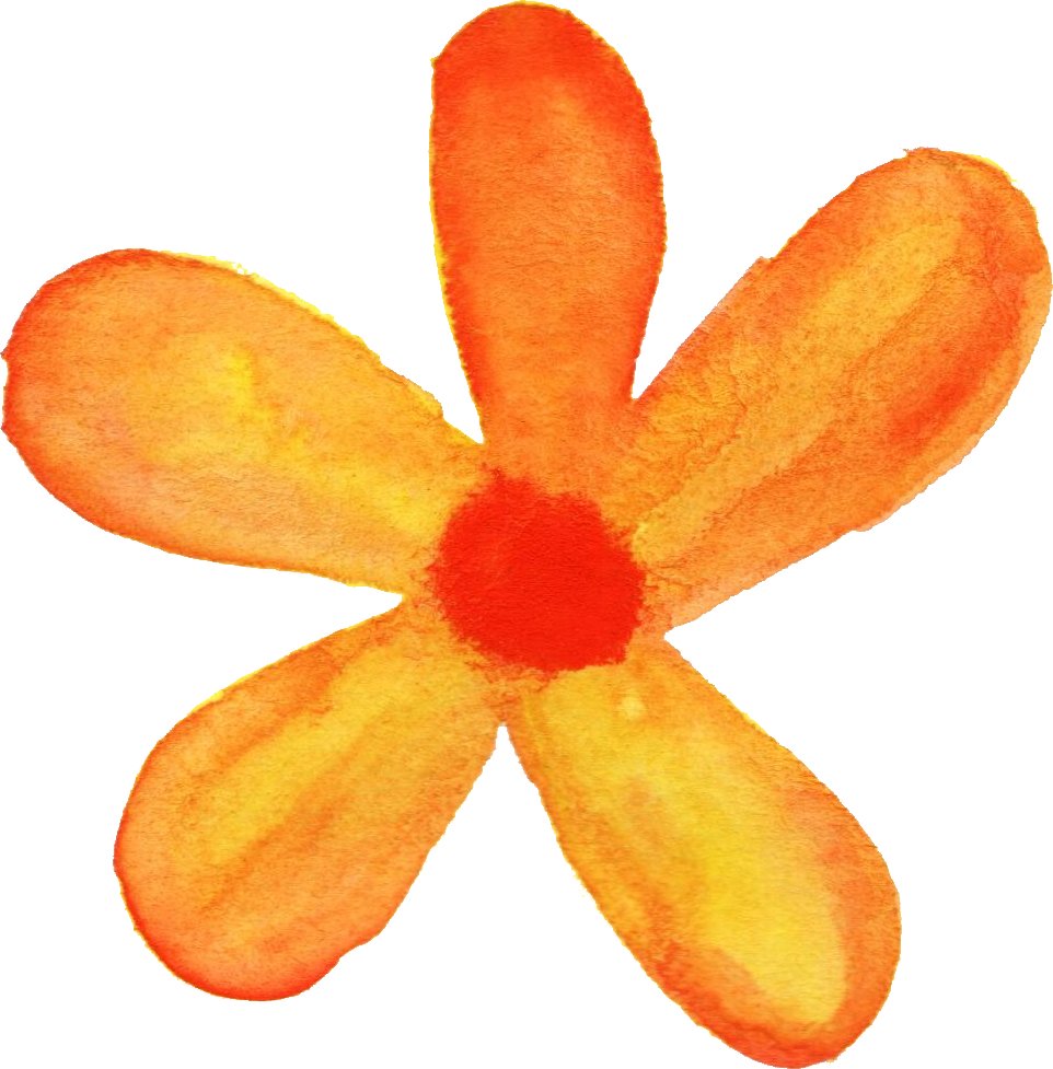 Flower png watercolor. Flowers transparent onlygfx