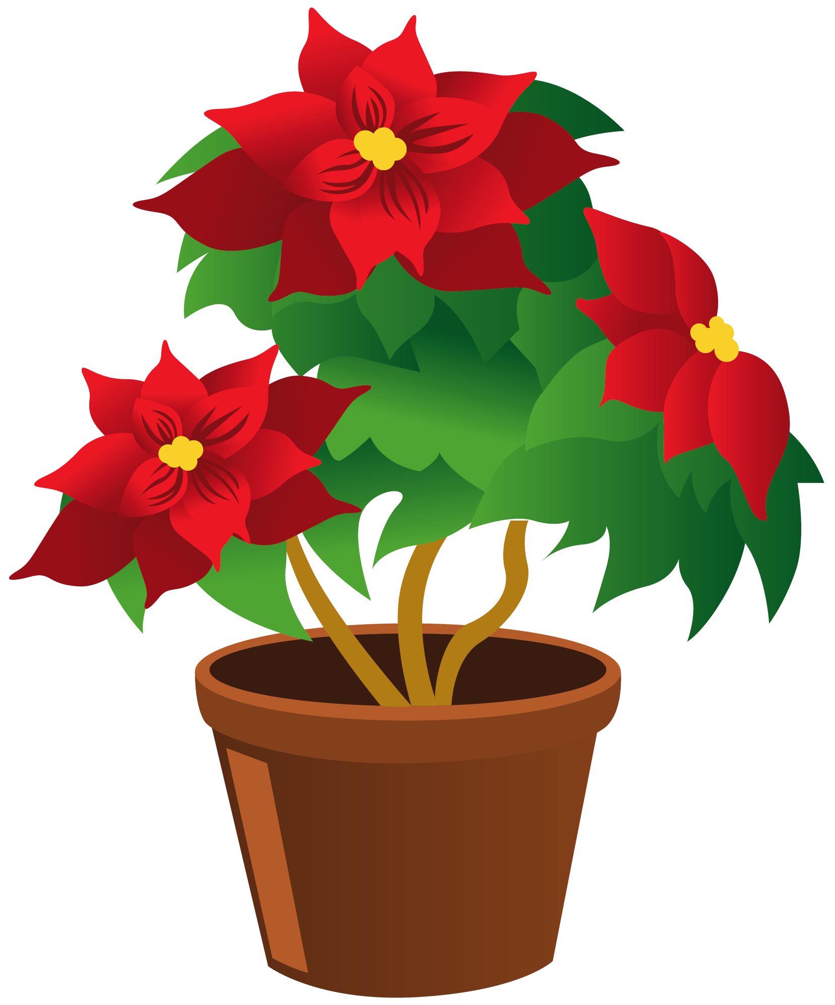 Flower pot clipart png. Poinsettia my garden valley