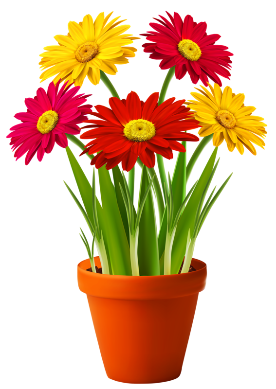 Flower pot png. Picture my garden valley