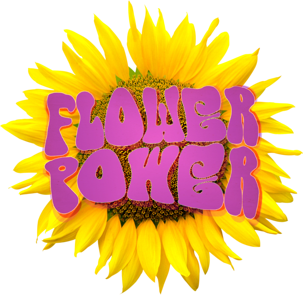 Flower power png. Hillsdale ny