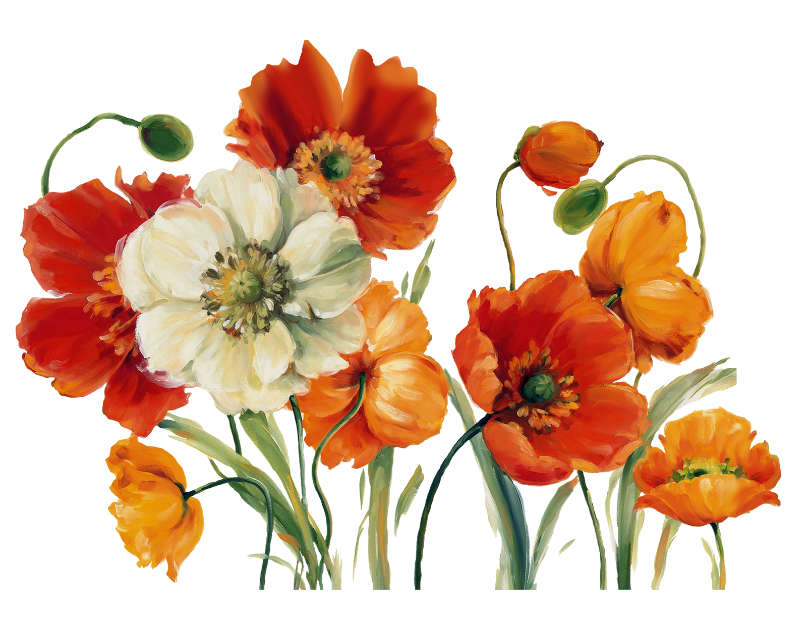 Flower print png. Decoupage painting pattern flowers