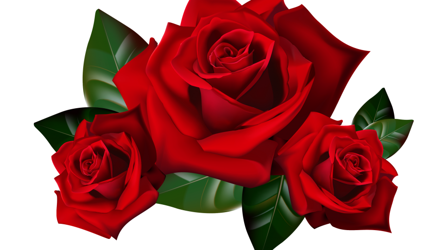 Red clipart picture hd. Roses png image black and white