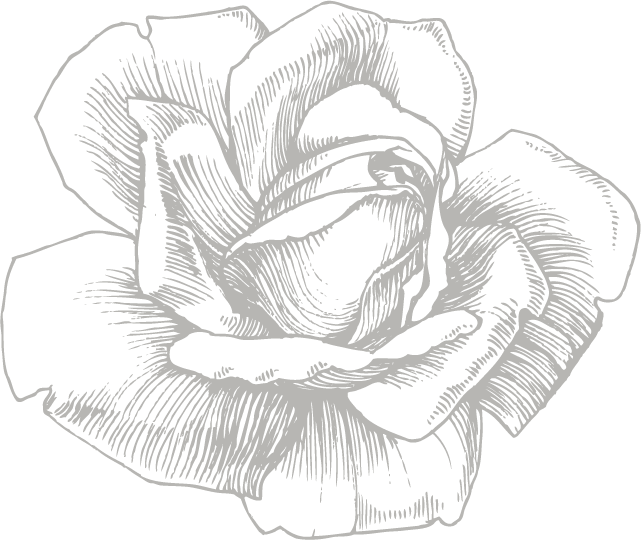 Flower sketch png. Eufloria flowers view all