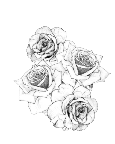 Flower sketch tumblr png. Tattoo drawing at getdrawings