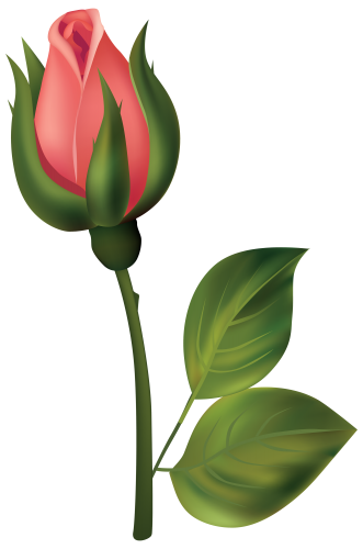 Stem drawing rose bud. Red png clipart owl