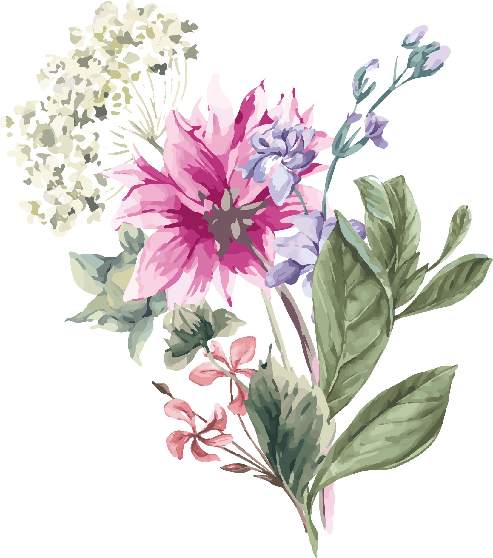 Flower stock png. Hydrangea illustration hand painted