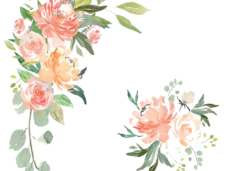 Flower texture png. Free watercolor vector clipart