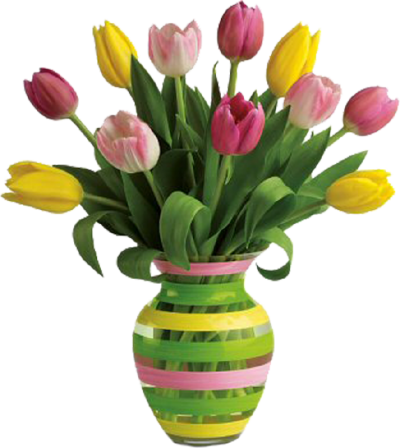 Flower vase png. Download free transparent image