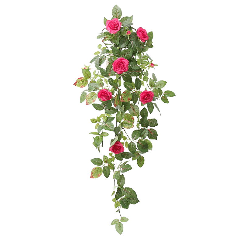 Flower wall png. Usd decorative rattan hanging