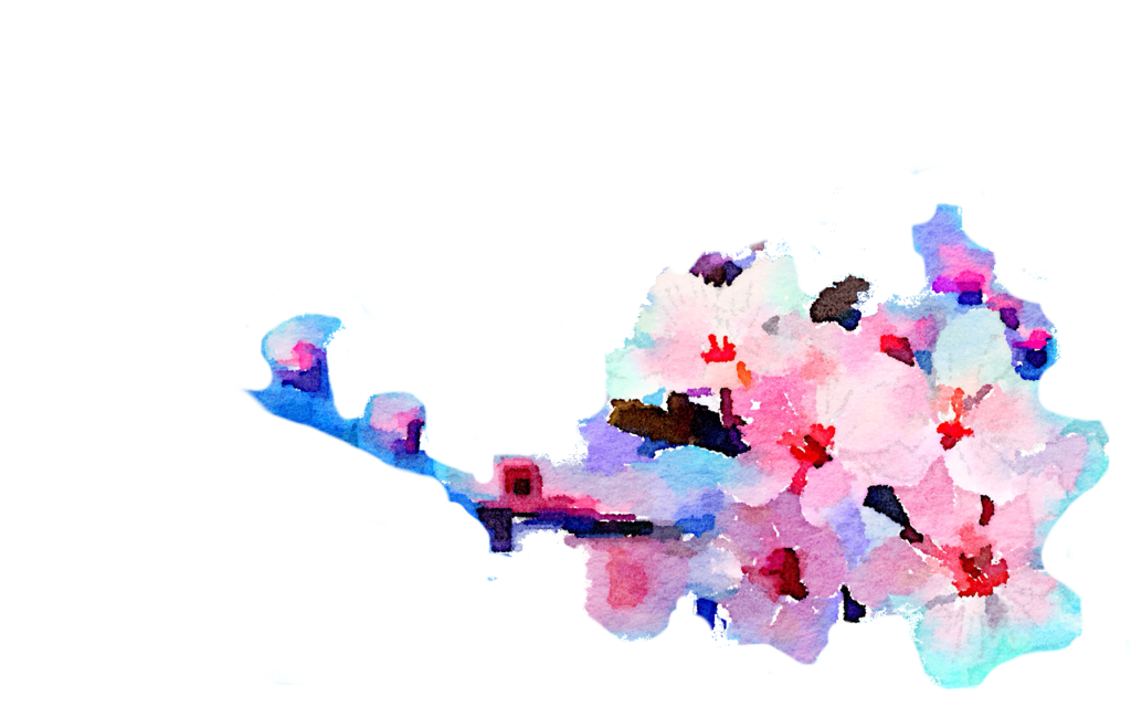 Free watercolor flowers png. Use freely by anjelakbm
