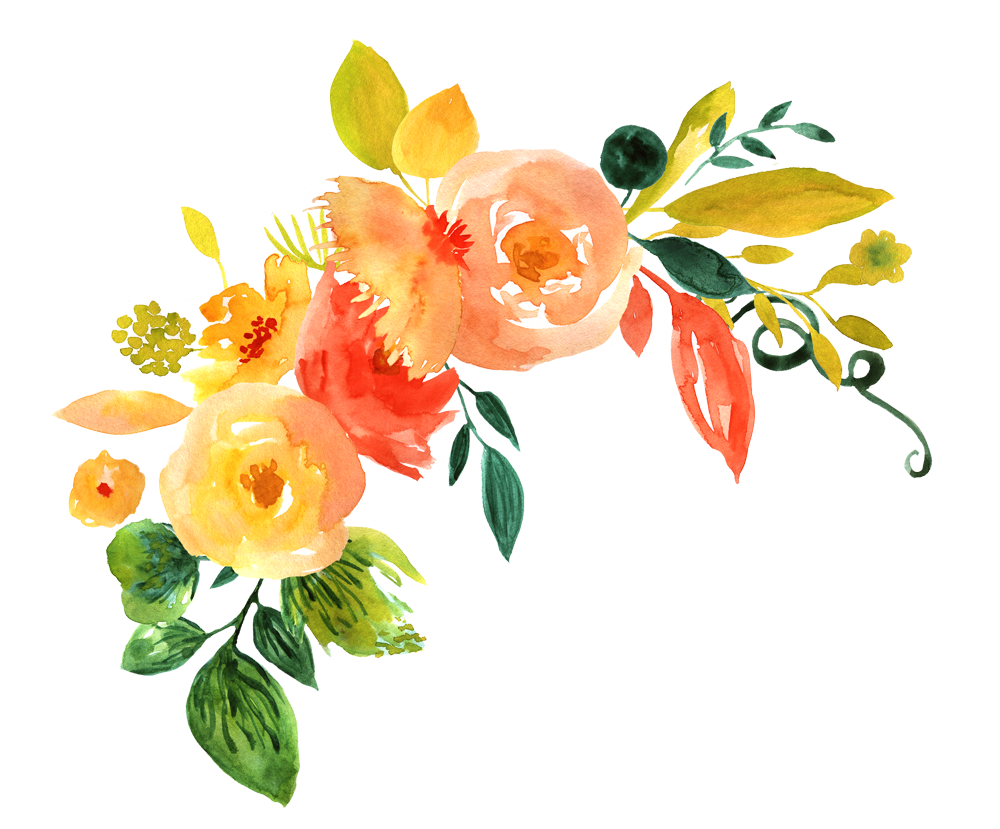 Flowers png. Watercolor flower free download