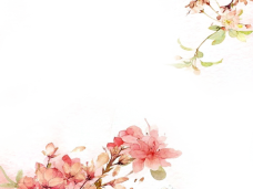 Flowers background png. Watercolor vector clipart psd
