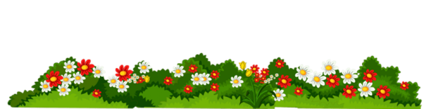 Flowers background png. Download with grass transparent