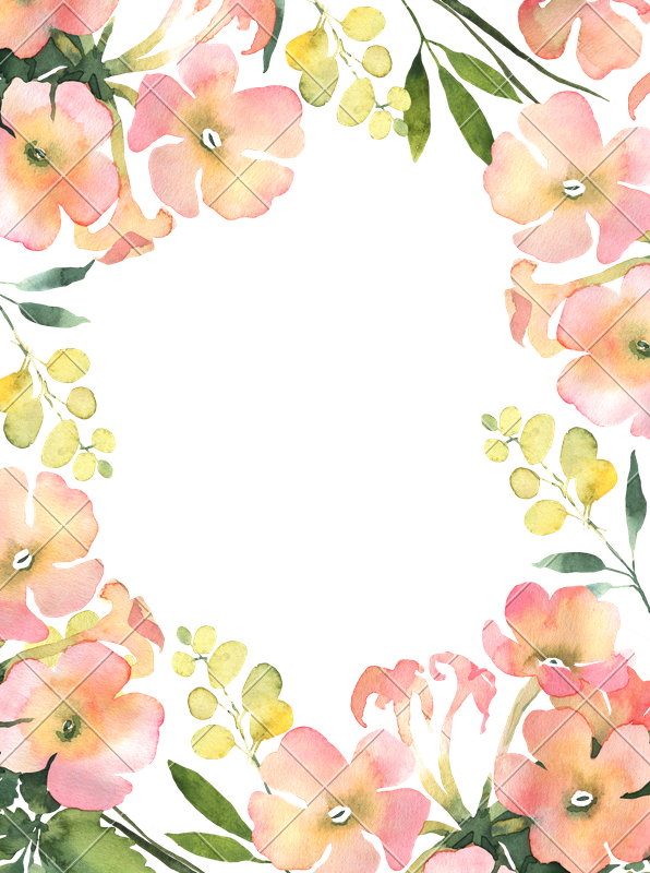 Flowers background png. Watercolor flower illustration for
