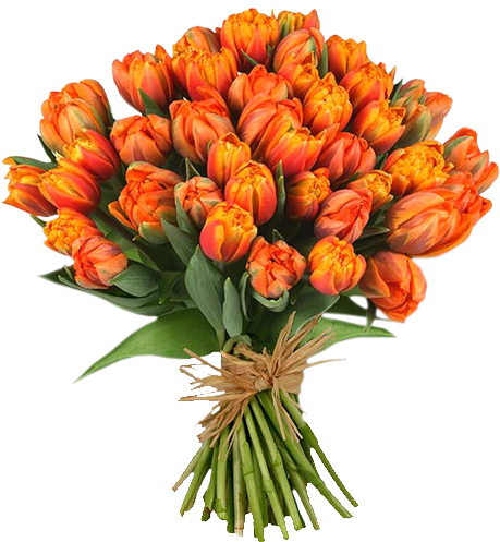Floral bouquet png. Of flowers images free