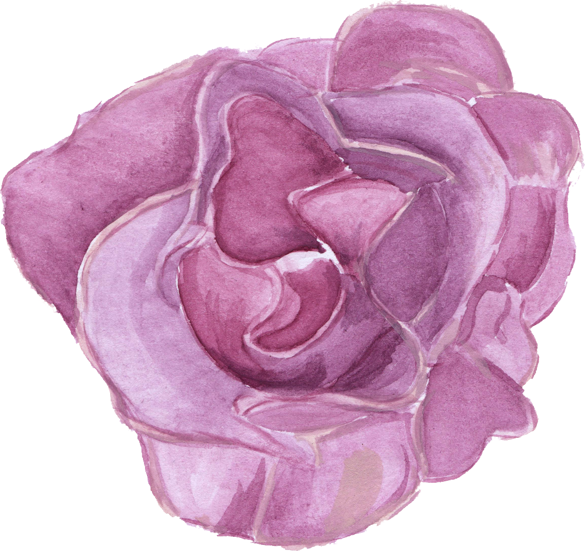 Flower png watercolor. Beautiful transparent onlygfx