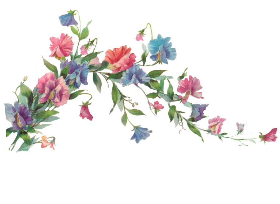 Flowers branch png. Floral element by jinifur