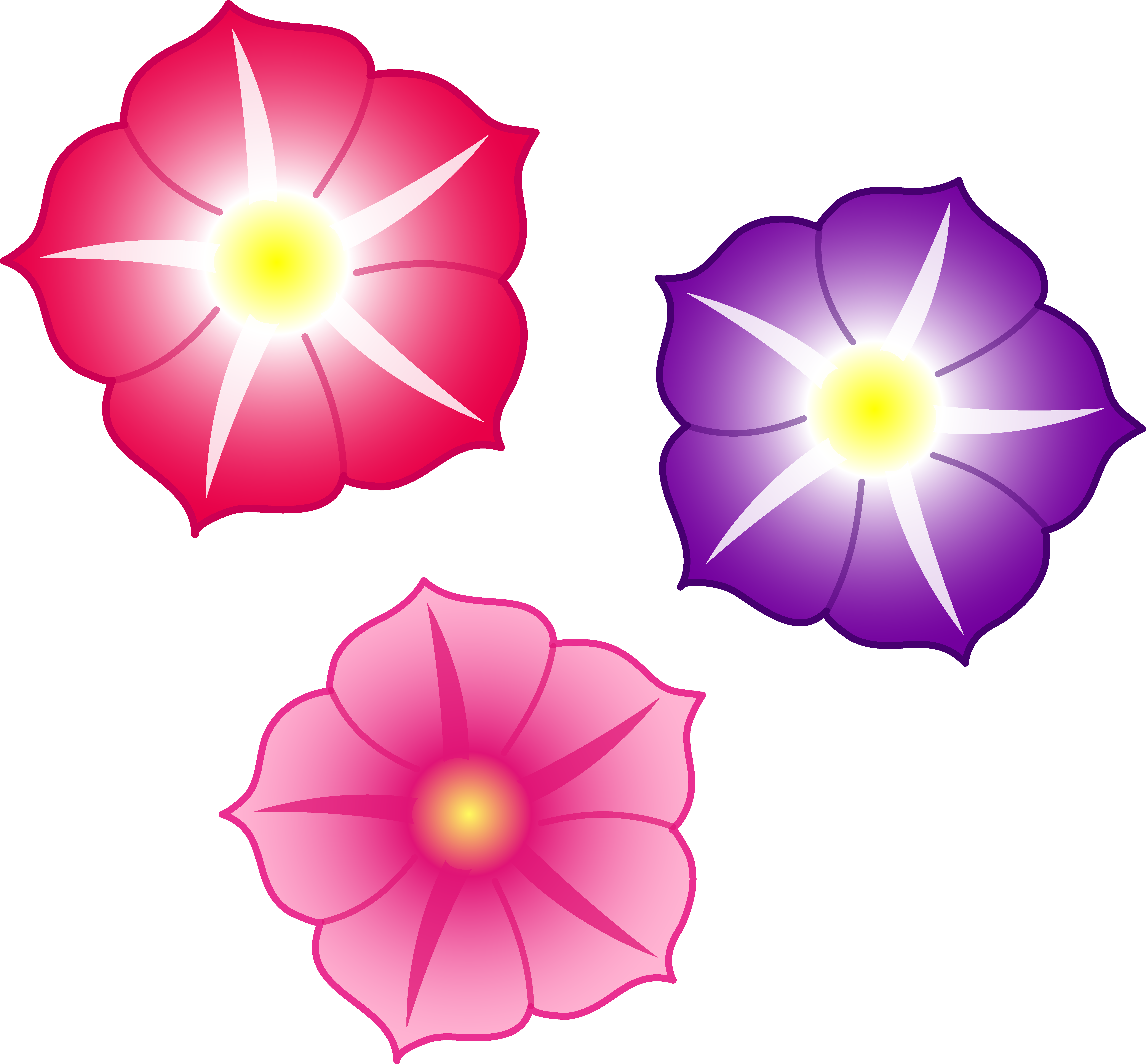 Colorful flower png. Flowers file mart