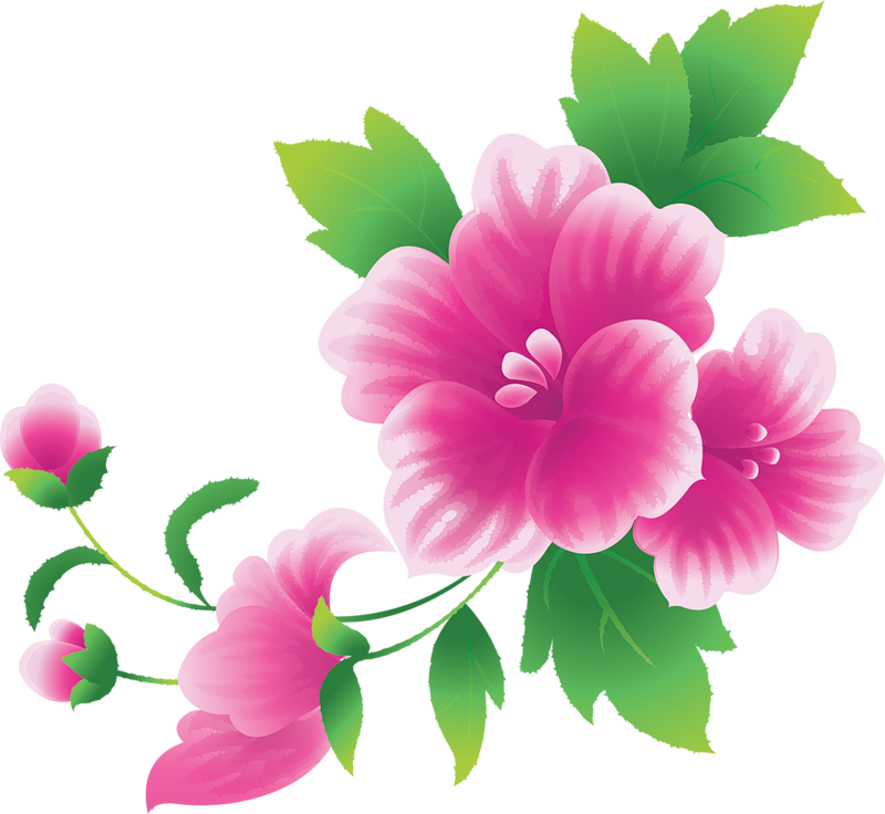 Flowers clip art png. Large pink clipart gallery