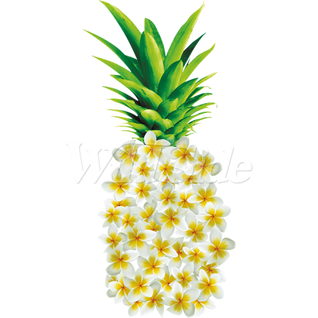 Flowers clipart pineapple. Made of the wild