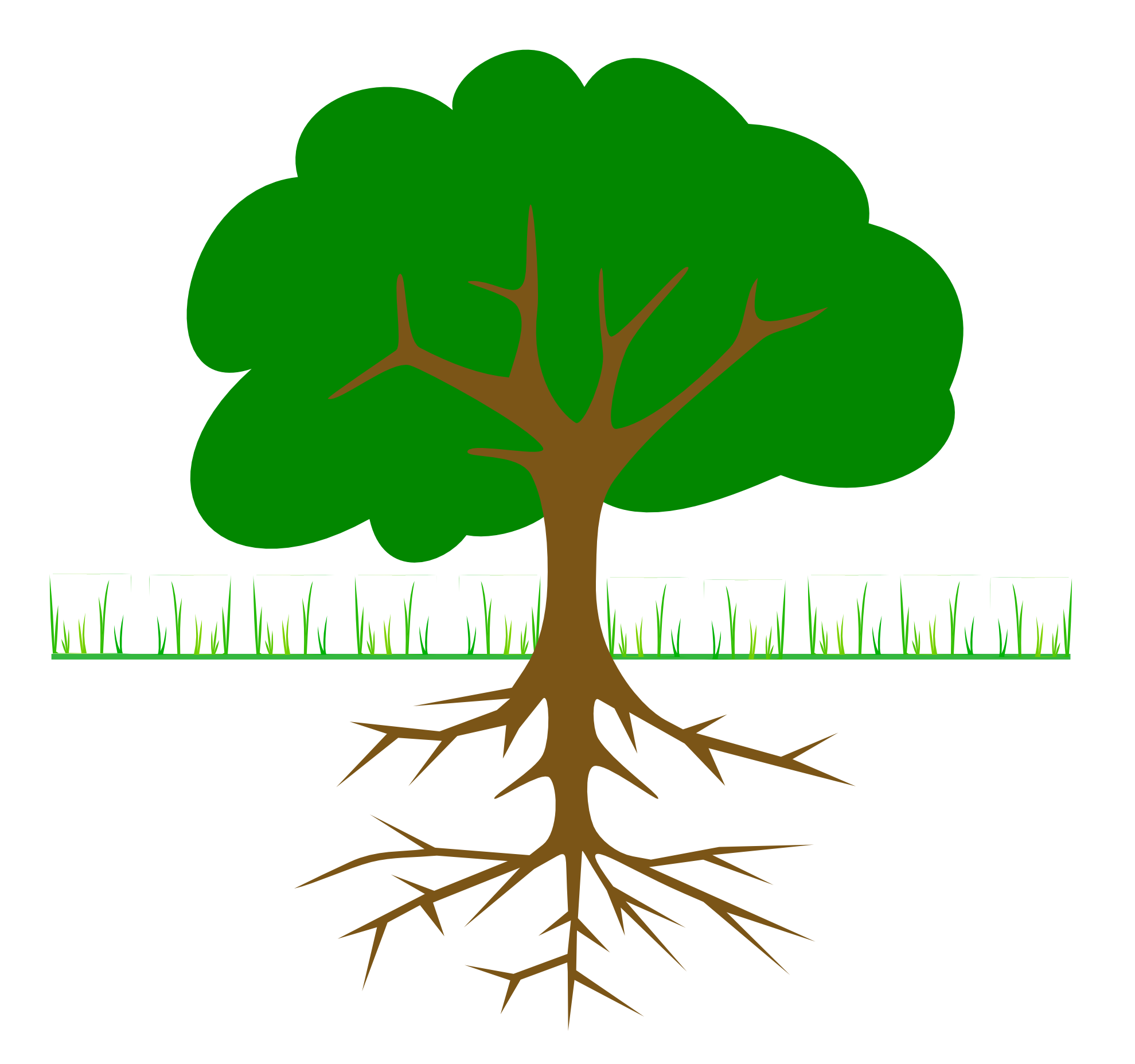 Plants clipart. Tree roots flowers