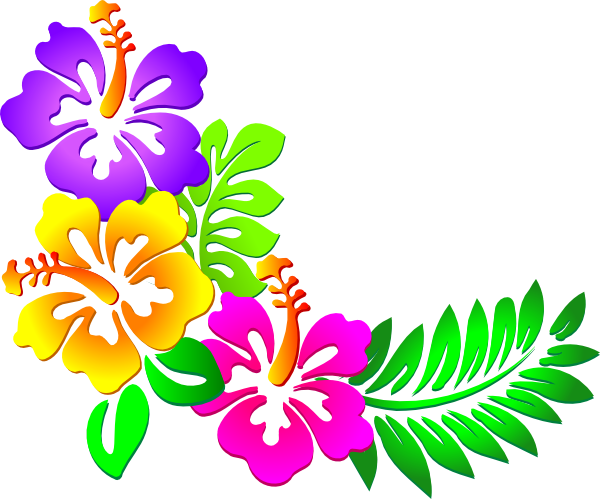 tropical flowers border png