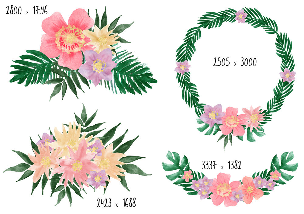 flowers clipart tropical