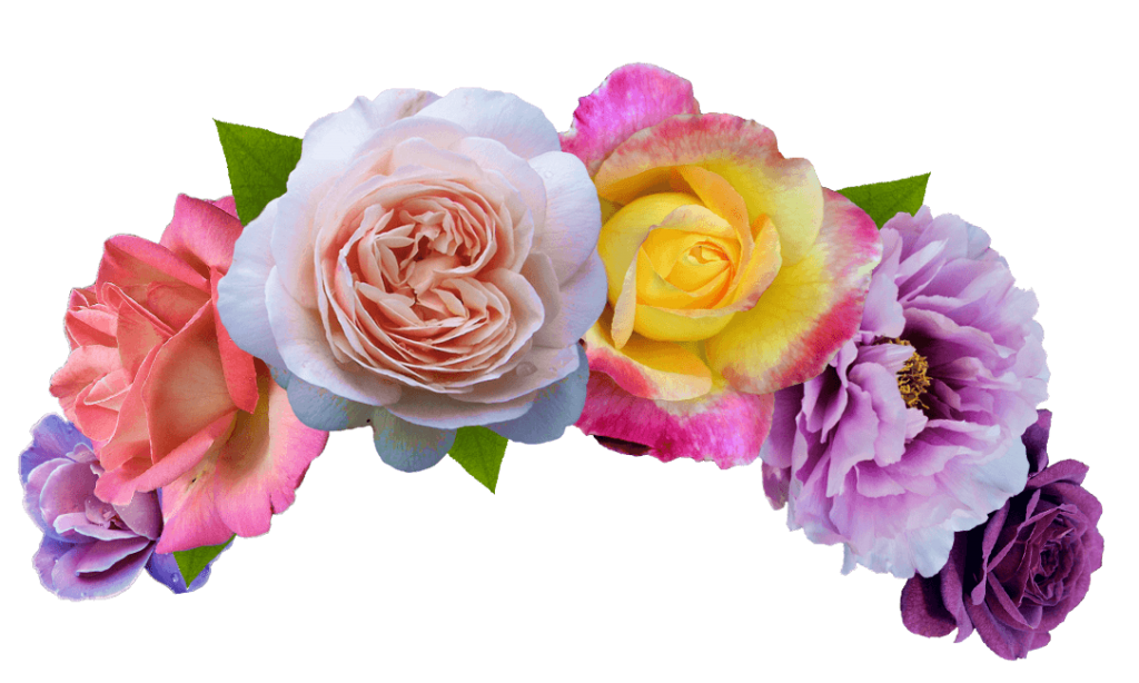 Flowers crown png. Flower hd vector clipart